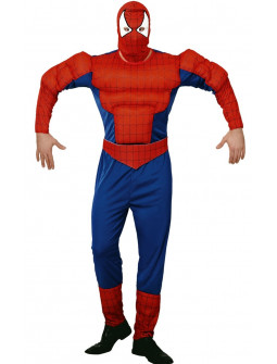Disfraz de Super Heroe