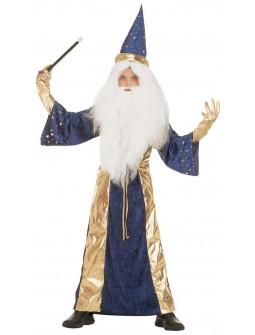 Disfraz de Merlin para Niño en Terciopelo