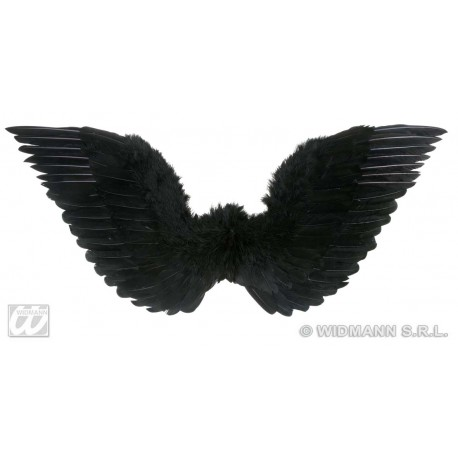 Alas de plumas Negras