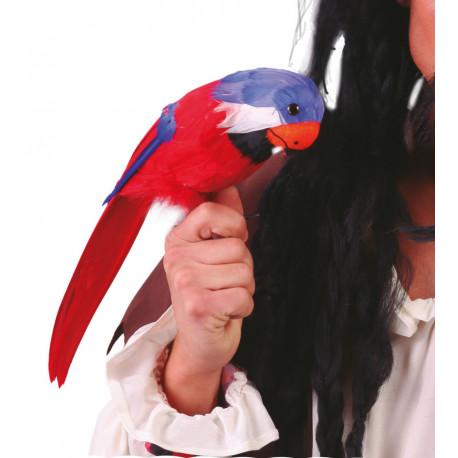 Loro con plumas en colores