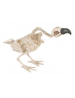 Esqueleto de Buitre para Decoración de Halloween