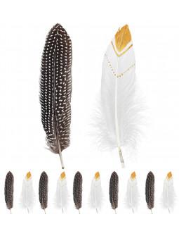Set de Plumas de Indio Decoradas Blancas y Negras