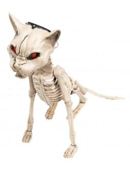 Esqueleto de Gato con Luz y Sonido para Decoración