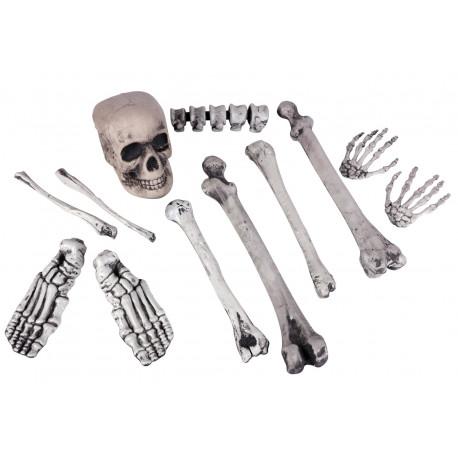 Calavera con Huesos para Decoración de Halloween
