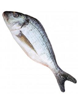 Pez Dorada de Peluche de 55cm