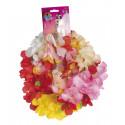 Kit Hawaiano con Flores Tropicales de Colores
