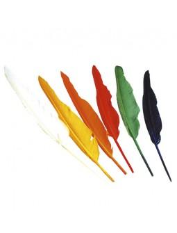 11 Plumas Indio en colores