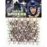 Cincuenta arañas - Spiders -