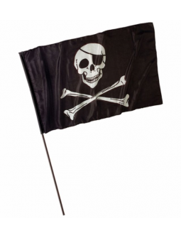 Bandera pirata con mastil