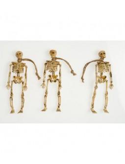 Esqueletos en tamaño pequeño