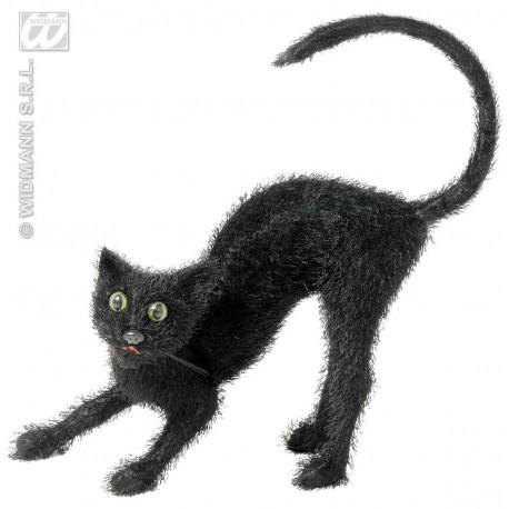 Gato con pelo negro
