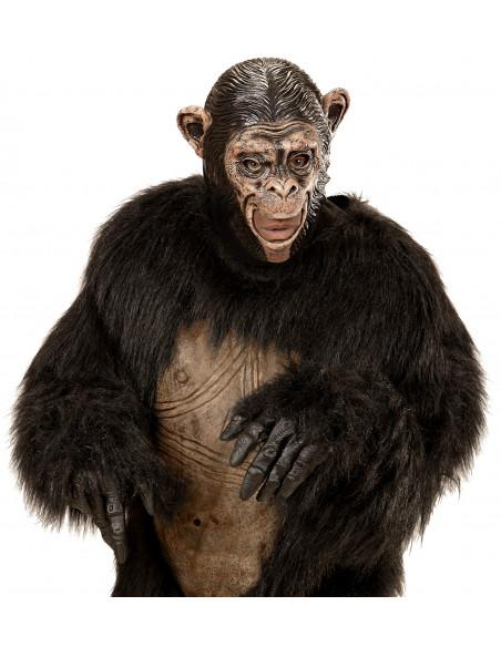 Macara de Mono con la boca abierta