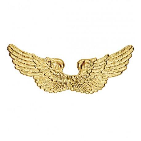 Alas Doradas de Angel